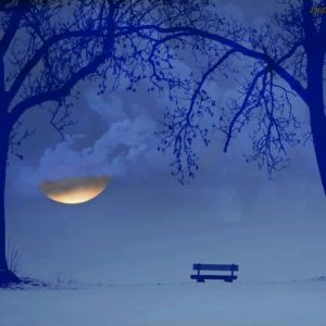 hó,hold magány