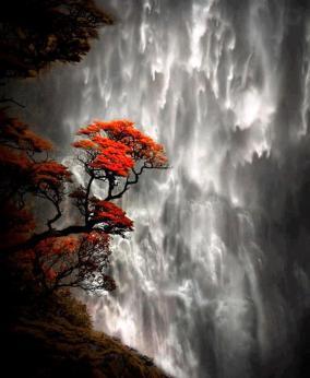 fa-vízeséssel